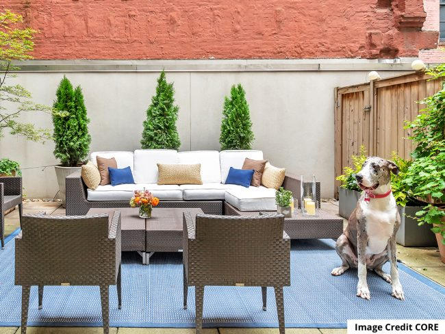 Finding the right dog for your NYC apartment